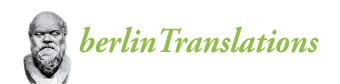 logo berlintranslations